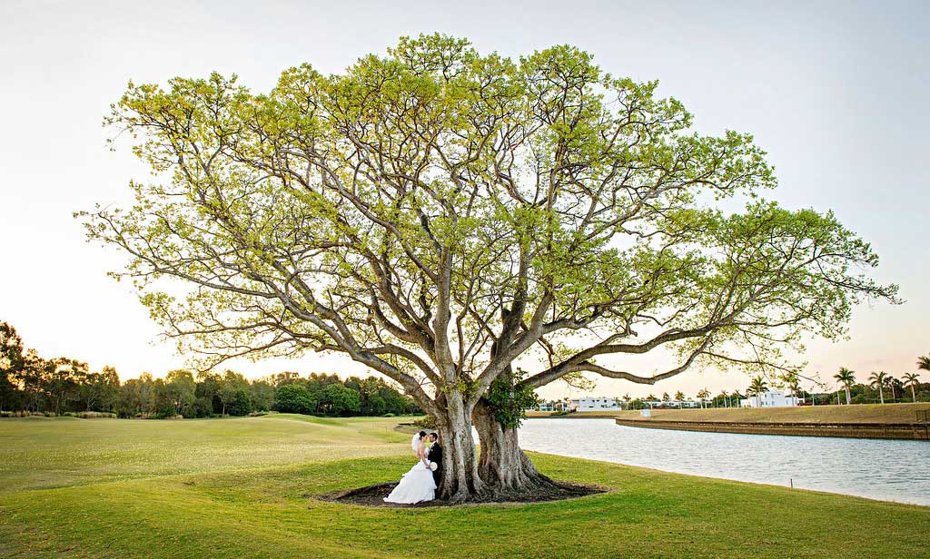 links-hope-island-wedding-photo-7